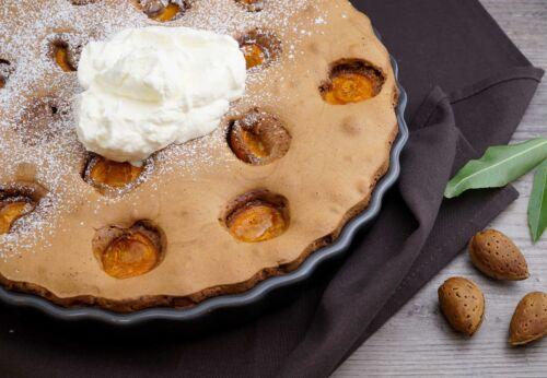 Schoko-Marillenkuchen mit Mandelmehl