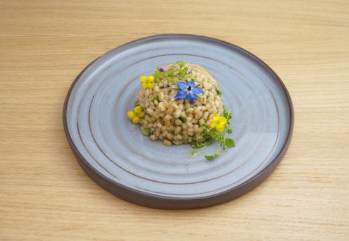 Steirisches Wild[-]kräuter[-]risotto mit Cuvée NEUN